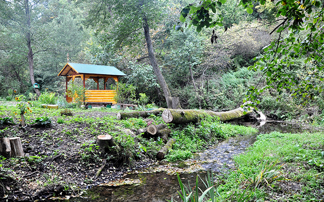 Участок в Чехове — бесценная недвижимость или ваш индивидуальный курорт
