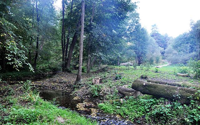 Насыщенная природными и культурными ценностями земля в Серпухове ждет своих новых жителей